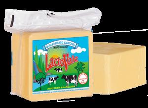 lacto-vale-queijo-prato-fracionado